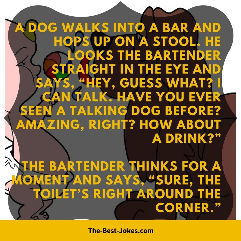 A Dog Walks