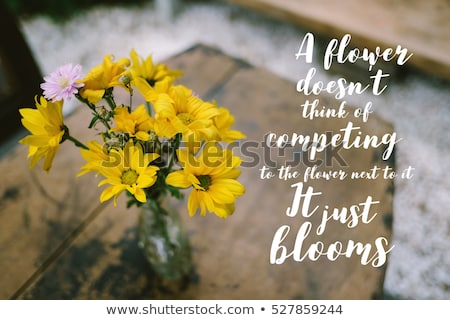 A Flower Doesn't Think Of Competing