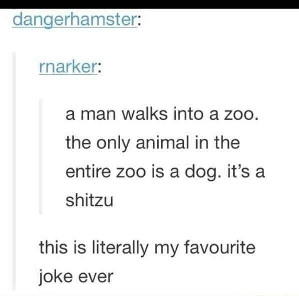 A Man Walks Into A Zoo