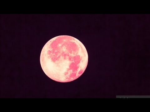 April's Pink Full Moon