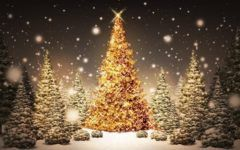 Awesome Christmas Pictures HD