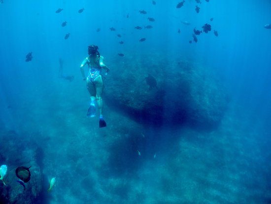 Awesome Underwater Photos