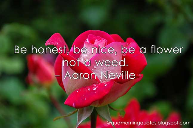 Be Honest Be Nice