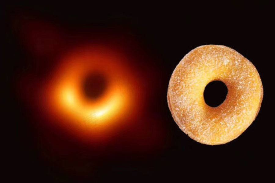 Black Hole Humor
