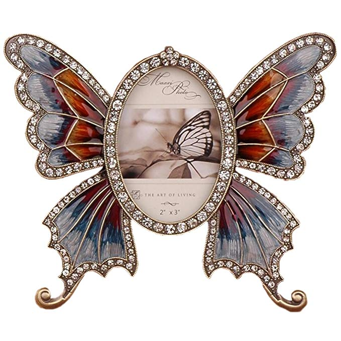 Butterfly Cartoon Frame