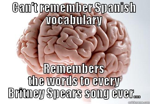 Can't Remember Spanish Vocabulary