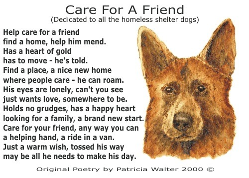 Care for a Friend