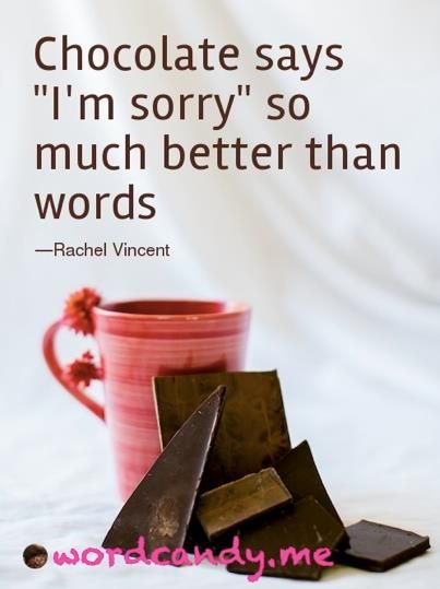 Chocolate Says I'm Sorry
