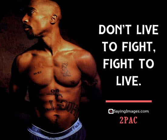 Don't Live To Fight