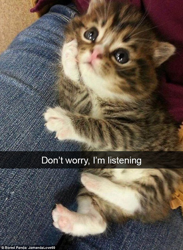 Don't Worry I'm Listening