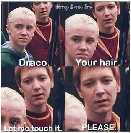 Draco Your Hair