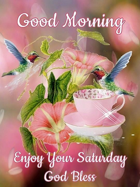 Enjoy Your Saturday