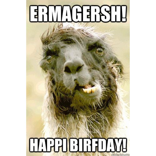Ermagersh! Happi birfday!