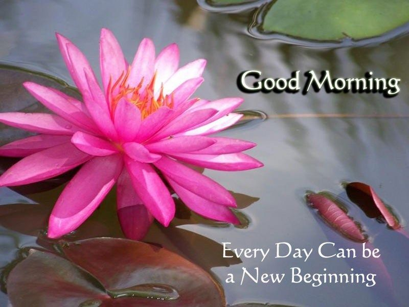 Every Day Can Be A New Beginning