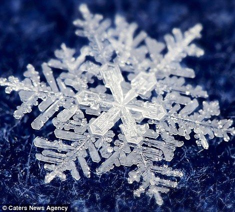 Featured Snowflake