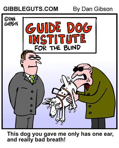 Guide Dog Institute