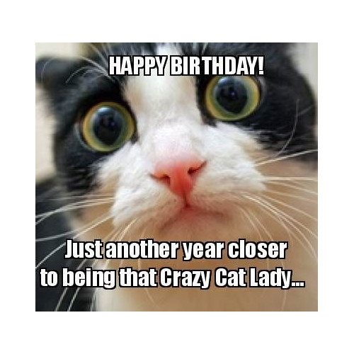 Happy birthday! Just another year closer to being that crazy cat lady…