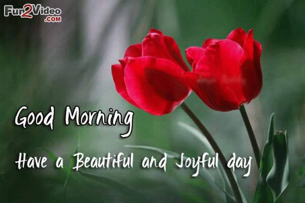 Have A Beautiful And Joyful Day