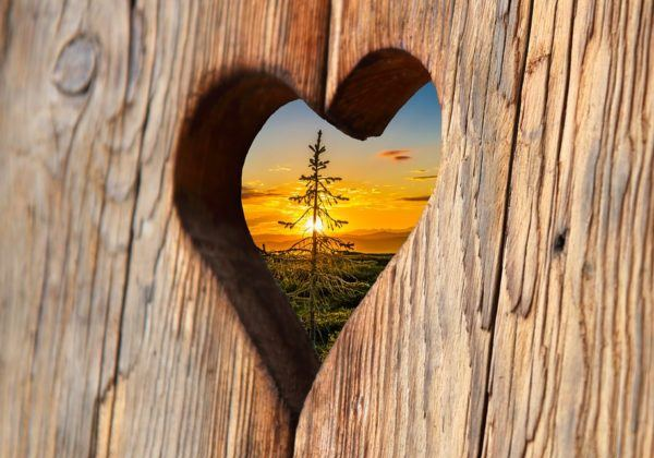 Heart View