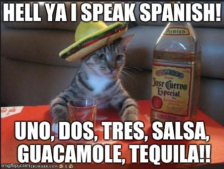 Hell Ya I Speak Spanish