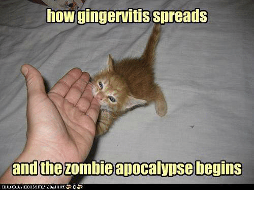 How Gingervitis Spreads