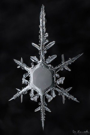 How To Photograph Snowflakes
