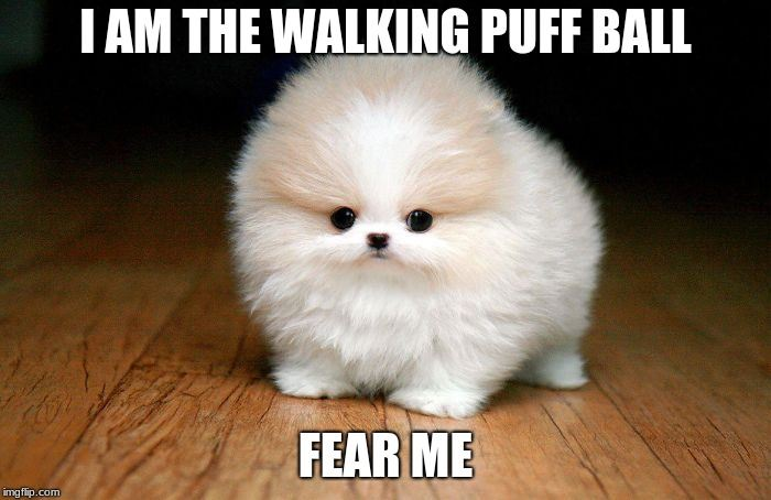 I Am The Walking Puff Ball