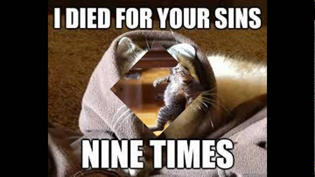 I Died For Your Sins Nine Times