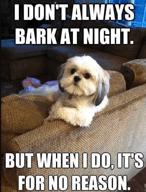 I Don't Always Bark At Night