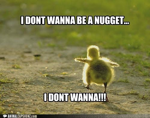 I Dont Wanna Be A Nugget