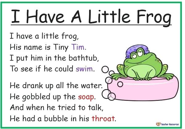 I Have A Little Frog