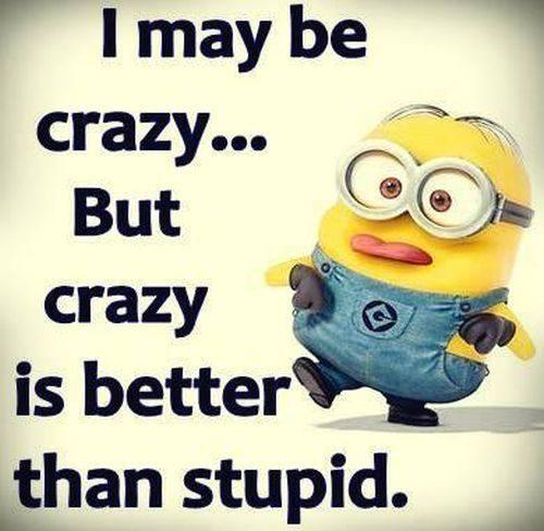 I Maybe Crazy