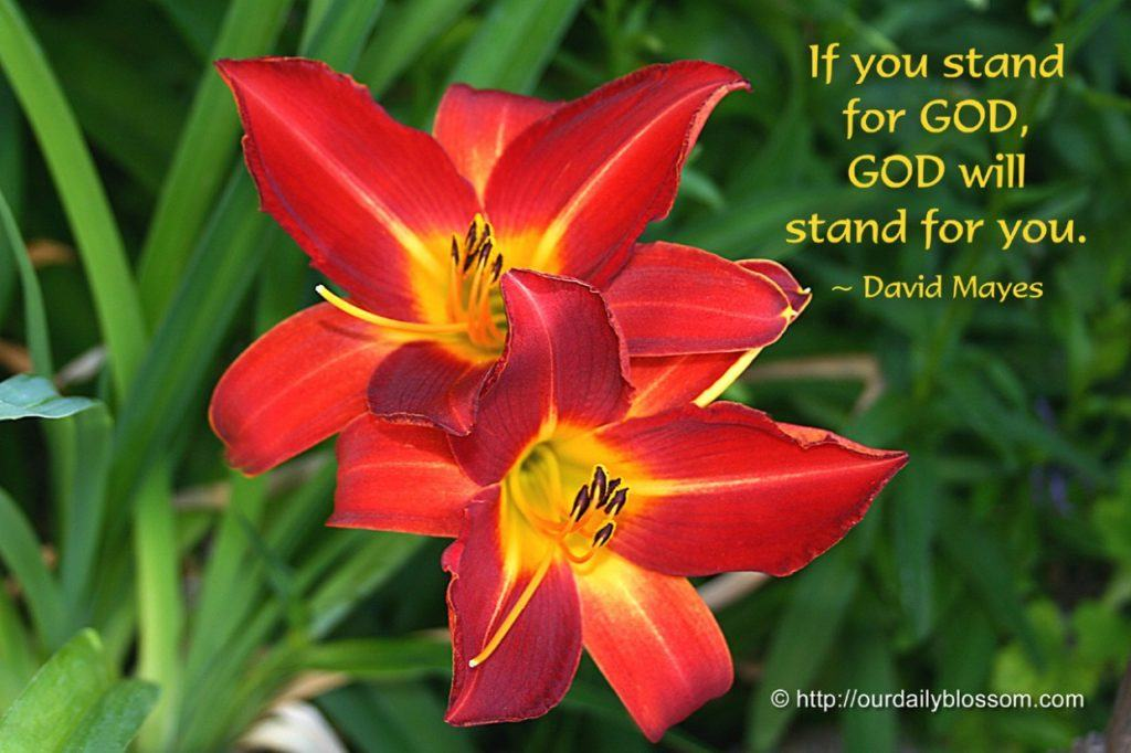 If You Stand For God