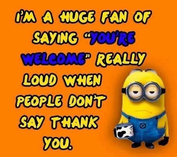I'm A Huge Fan