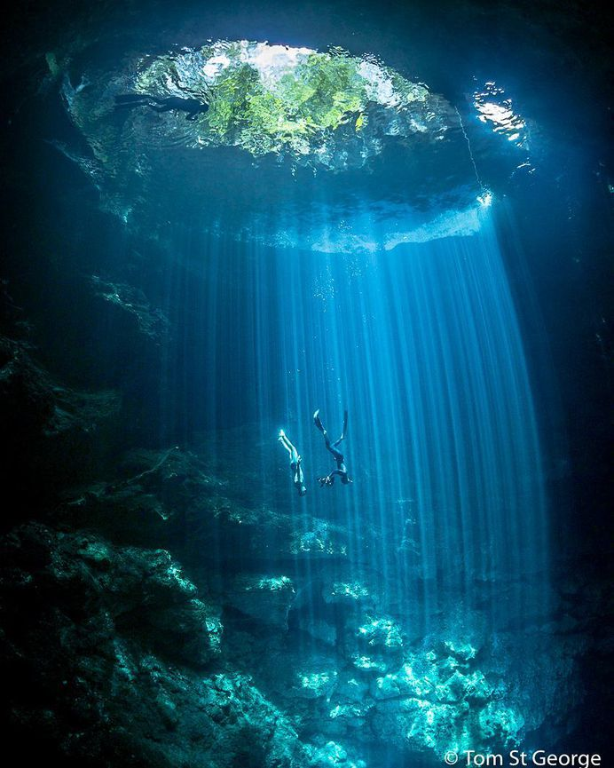 Incredible Underwater