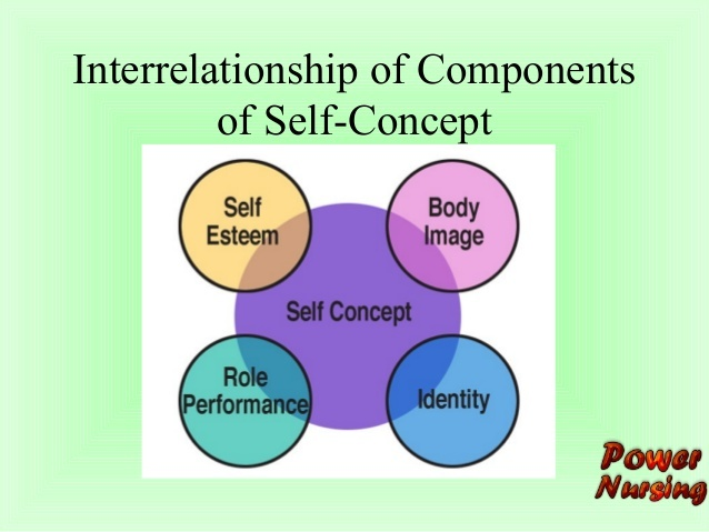 Interrelationship Of Components