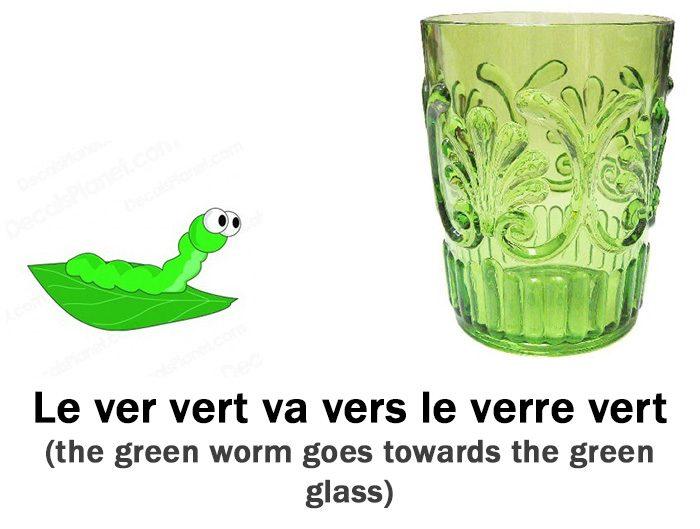 Le ver vert va vers