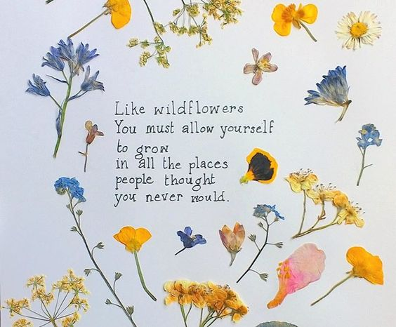 Like Wildflowers