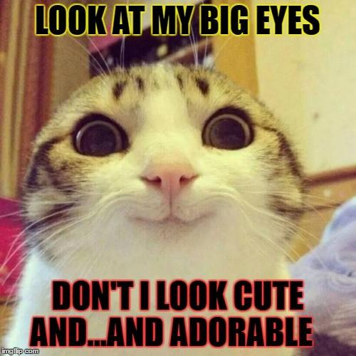 Look At My Big Eyes