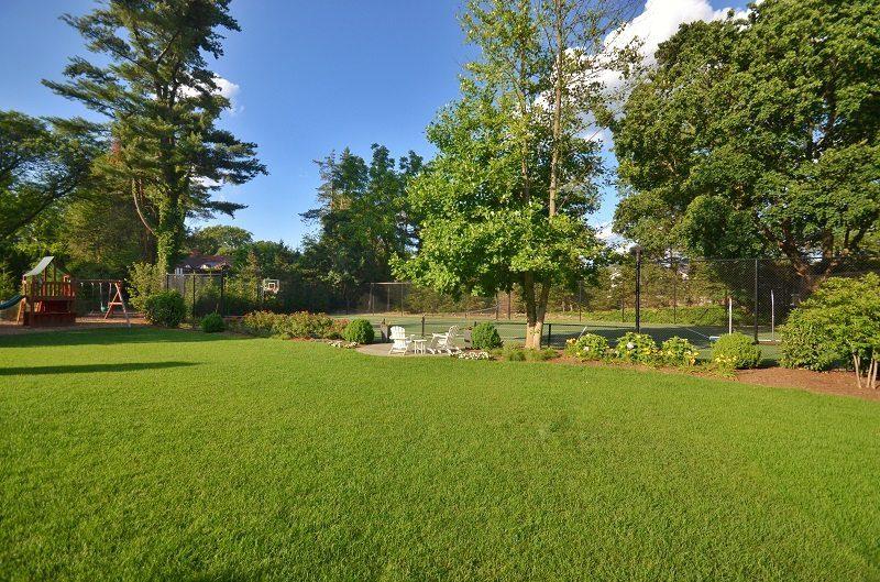 Lush Lawn 800