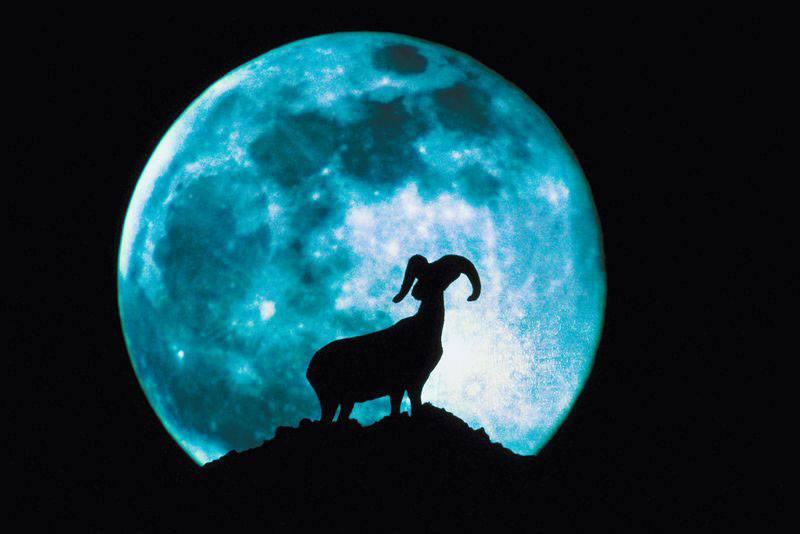 Moon And Farming