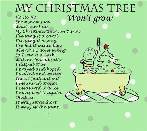 My Christmas Tree Won't Grow