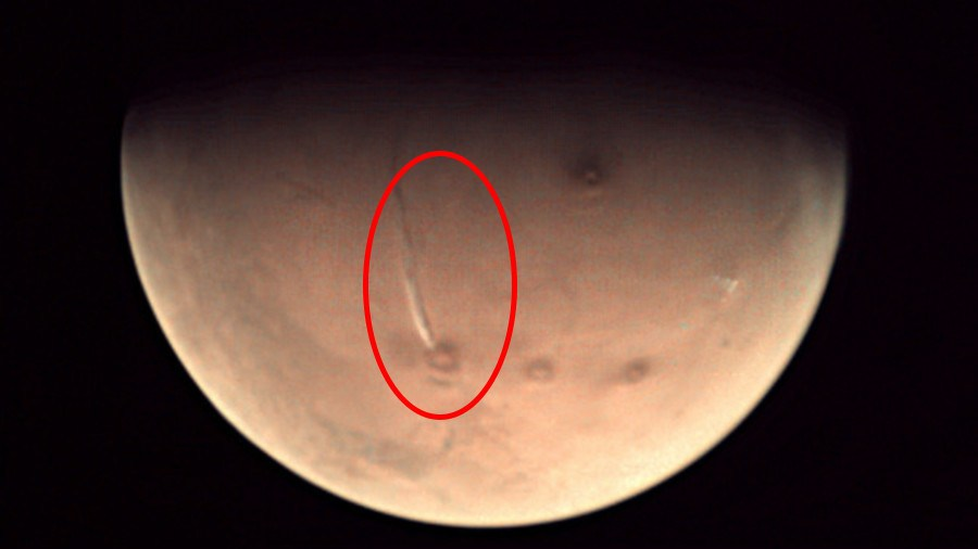 NASA Is Hiding Life On Mars