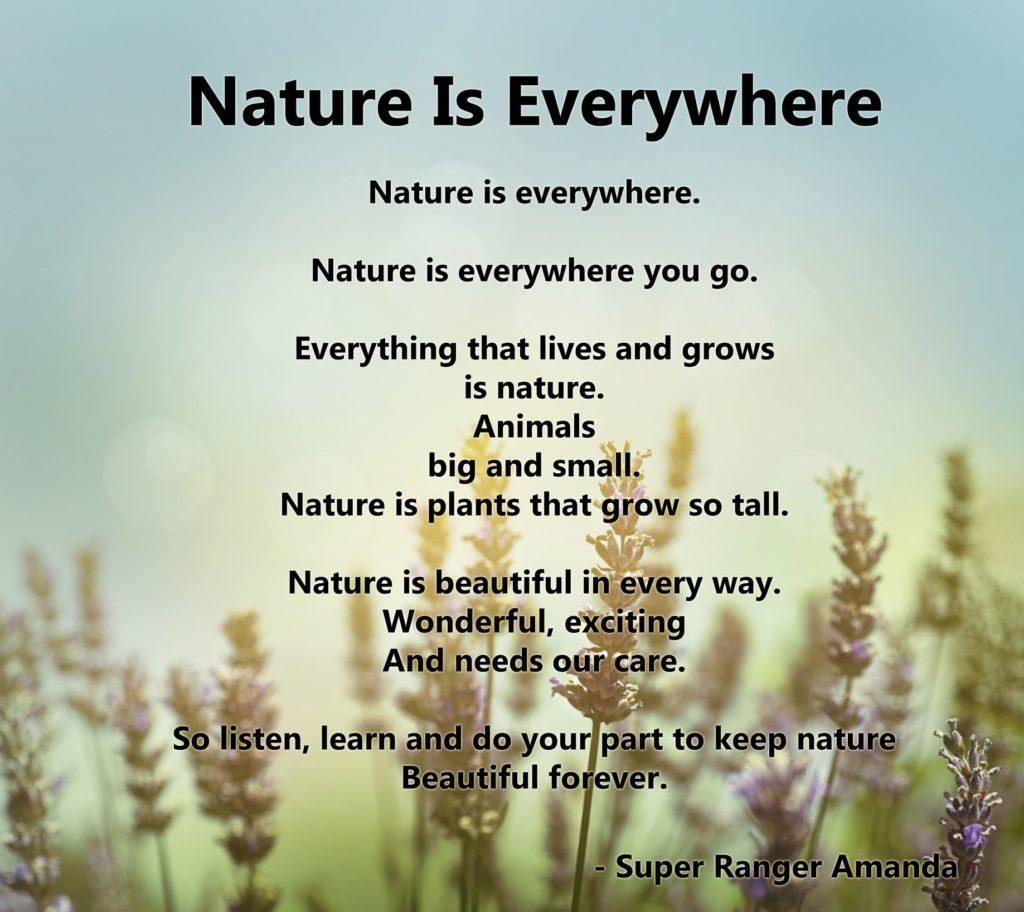 Nature is Everywhere