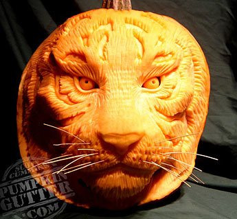 Pumpkin Carving Cats