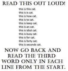 Read This Out Loud