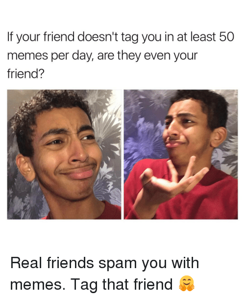 Real Friends Spam You With Memes