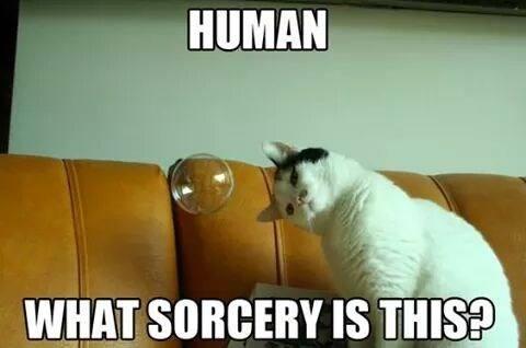 Sorcery..