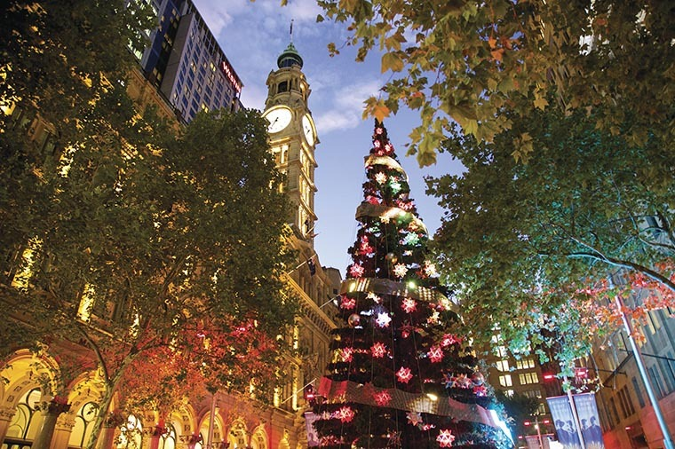 Sydney Christmas Lights