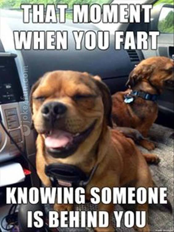 That Moment When You Fart